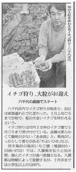 朝日新聞に島田いちご園が紹介されました